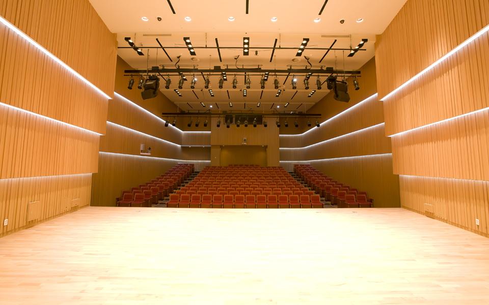 Daegu-Concert-House_Chamber Hall Augusto Meijer